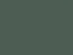 Dark blue-green-grey color