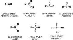 Le groupement fonctionnel est un atome, ou un groupe d'atomes, qui a des propriétés chimiques similaires chaque fois qu'il est présent dans des composés différents. Il définit les propriétés caractéristiques physiques et chimiques des familles de composés