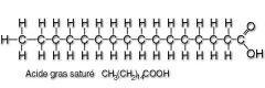 Un acide gras saturé est un acide gras ayant des atomes de carbone totalement saturés en hydrogène. Solide à 25°C.