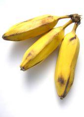 Banana, Burro