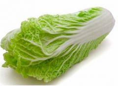 Cabbage, Napa
