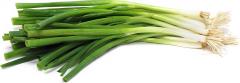 Onion, Green