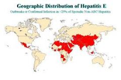 similar to hep A (think vowels!)- young adults, ingestion