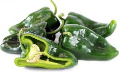 Pepper, Pasilla