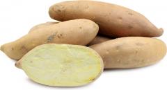 Potato, Little Creamers