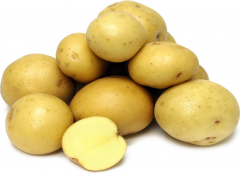 Potato , Sweet