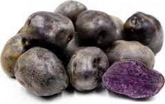 Potato, Purple