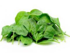 Spinach , Bunch