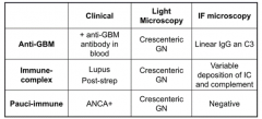 - Clinical: ANCA+